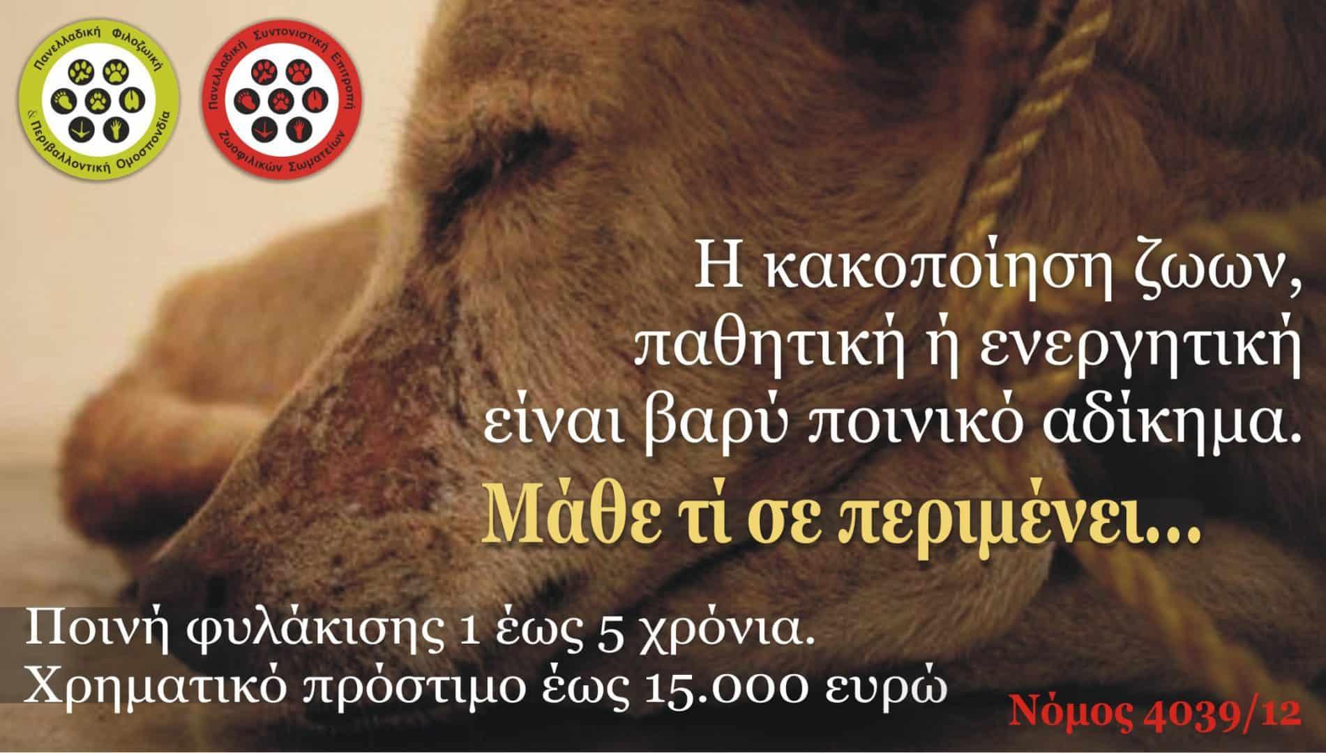 Άνευ προηγουμένου η συχνότητα φρικτών εγκλημάτων κατά των ζώων: ανοιχτή επιστολή προς το Υπουργείο Δικαιοσύνης.