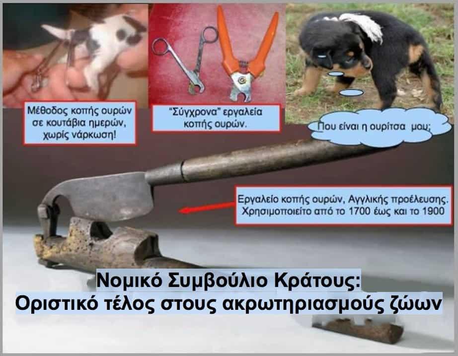 Νομικό Συμβούλιο Κράτους Τέλος στους ακρωτηριασμούς ζώων