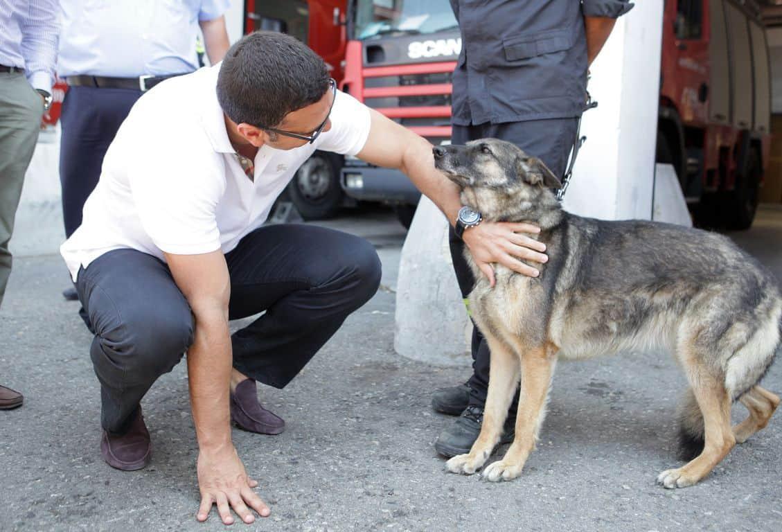 Παρέμβαση Υπουργού κ.Κικίλια και Αρχηγού ΕΛ.ΑΣ για τις κακοποιήσεις ζώων./Intervention by the Minister Mr Kikilias and the Chief of the Hellenic Police Force for the animal abuses