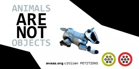 Petition: Animals are NOT objects!Spread it to the World!!!