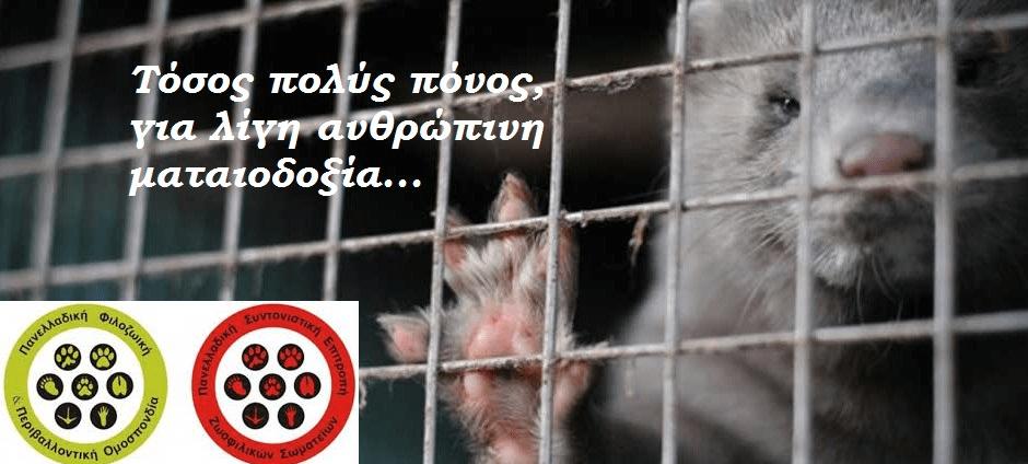 Να απαγορευτεί η εκτροφή γουνοφόρων ζώων στην Ελλάδα