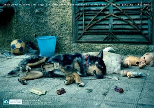 Ημερίδα στη Θεσσαλονίκη: «Η κακοποίηση των ζώων και η αντιμετώπιση του φαινομένου σε μια σύγχρονη κοινωνία»
