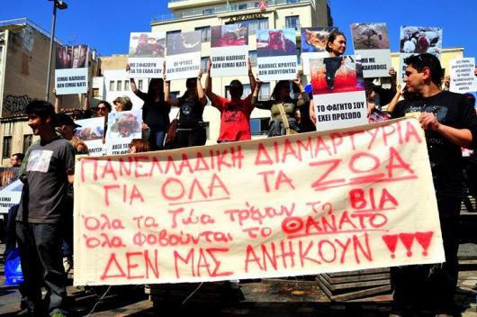 """Πανελλαδική εκδήλωση διαμαρτυρίας υπέρ των """"αδέσποτων"""" και """"δεσποζόμενων"""" ζώων"""