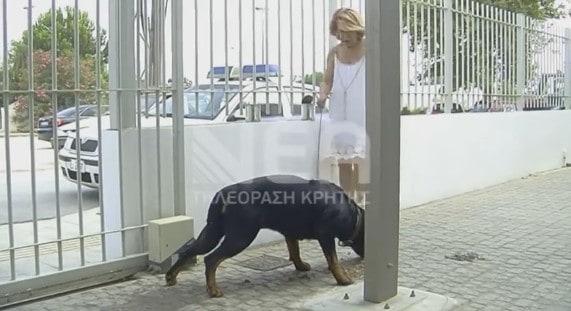 """Δύο Rottweiler μέσα στο Αστυνομικό Τμήμα Σούδας – Πώς """"σώθηκαν"""" οι αστυνομικοί"""