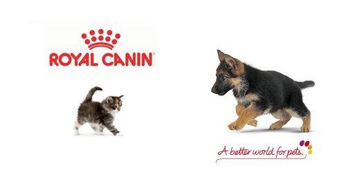 Ευχαριστήριο στην εταιρία Royal Canin που τον Οκτώβριο σίτισε αδεσποτάκια σε όλη την Ελλάδα