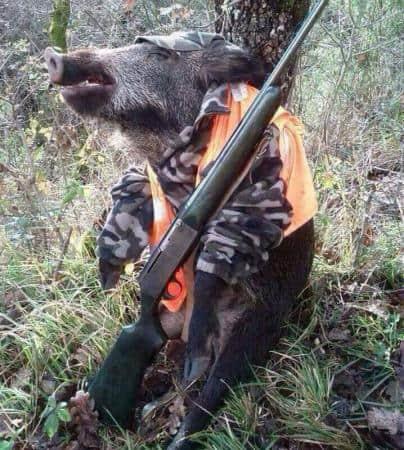 Ρυθμιστική απόφαση για το κυνήγι. Άλλη μια ανακολουθία λόγων και έργων στα θέματα των ζώων / Regulatory decision regarding Hunting. Yet another inconsistency between words and actions surrounding matters of animals