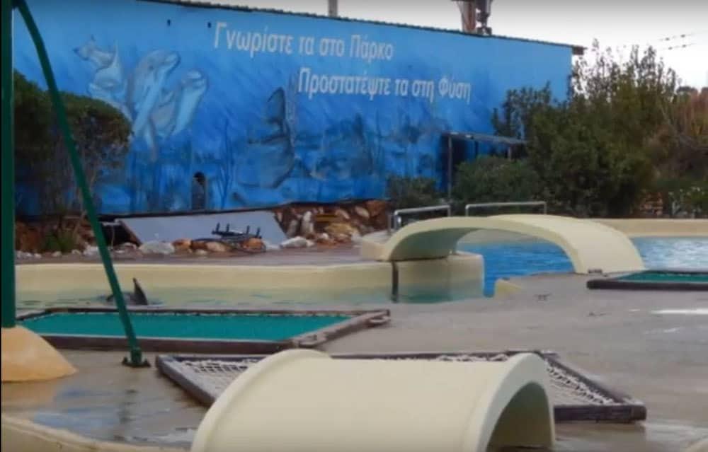 Αντί να οργώνουν τους ωκεανούς, μένουν εγκλωβισμένα στις πισίνες