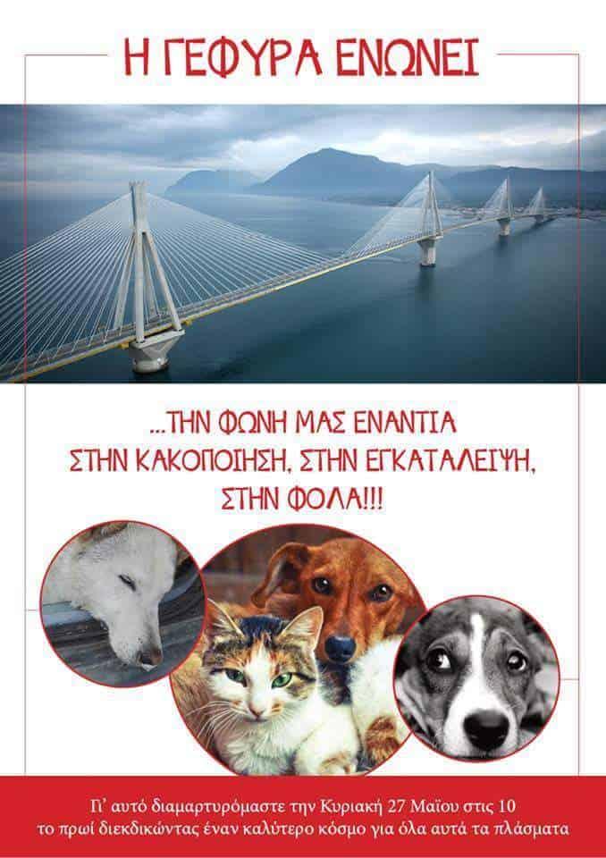 Η γέφυρα ενώνει τη φωνή μας κατά της κακοποίησης των ζώων