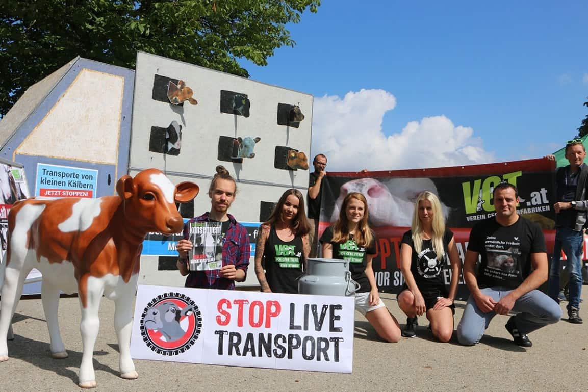 Παγκόσμια διαμαρτυρία για τον τερματισμό της μεταφοράς ζώντων ζώων