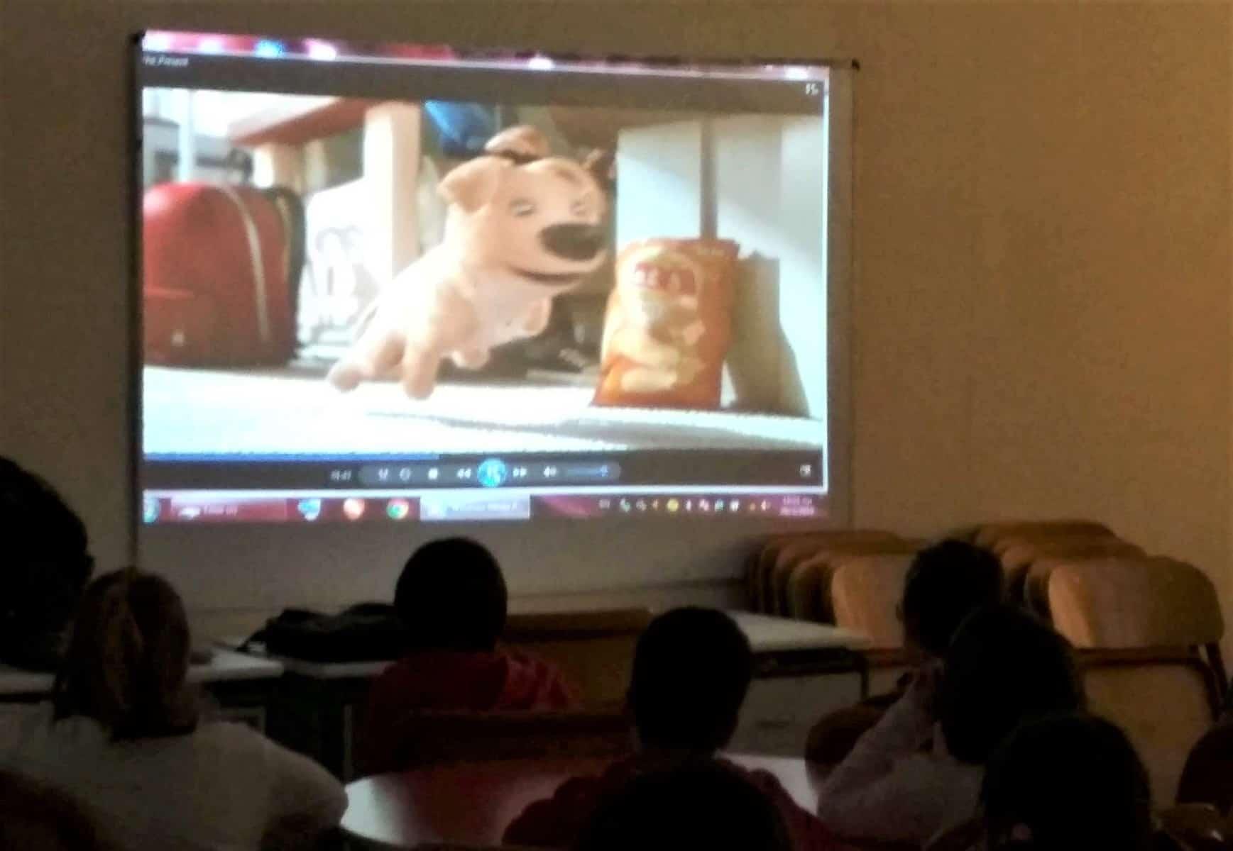 """""""Άνθρωποι και Ζώα Συγκάτοικοι στον ίδιο πλανήτη""""παρουσίαση στο 12ο δημοτικό σχολείο Ζωγράφου / PFPO's educational program """"People and animals: Roommates on the same planet"""" was presented at the 12th Primary School in Zografou Municipality"""
