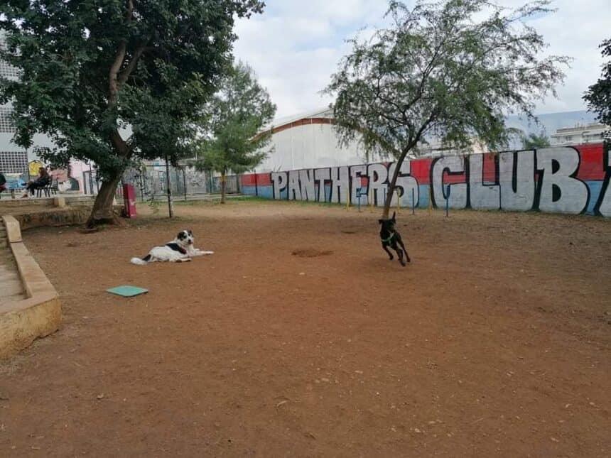 Δελτίο Τύπου του Φ. Σ. ''Αδεσποτολόγιο'' για το πρώτο πάρκο σκύλων στην Ν. Σμύρνη