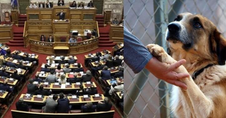 Δελτίο Τύπου: Δηλώσεις του κ. Μητσοτάκη σχετικά με το νέο σχέδιο νόμου για τα ζώα συντροφιάς