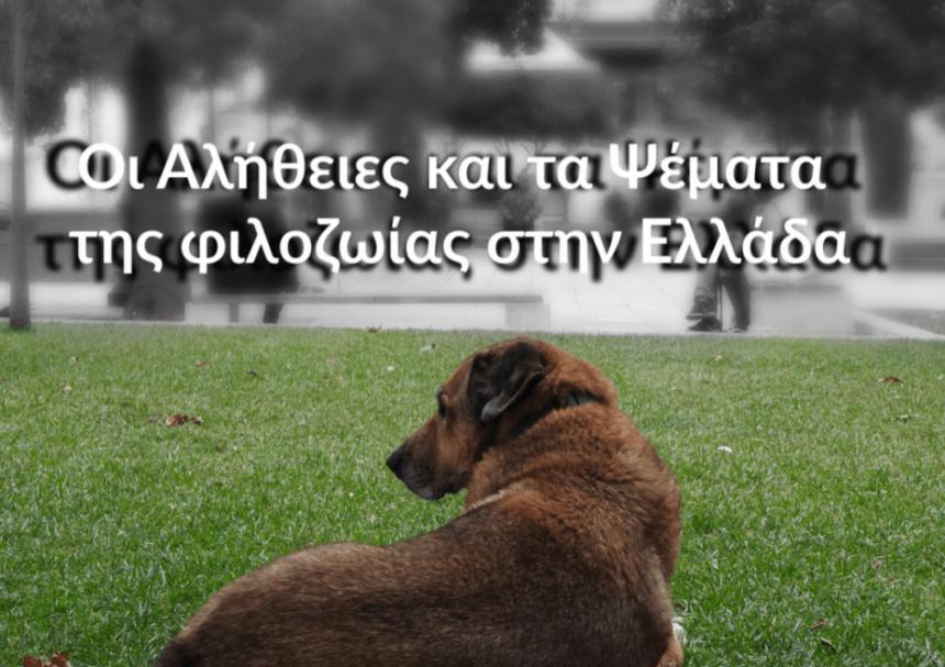 Οι Αλήθειες και τα Ψέματα  της φιλοζωίας στην Ελλάδα, μια εξαιρετική μελέτη για τις υιοθεσίες στο εξωτερικό,
