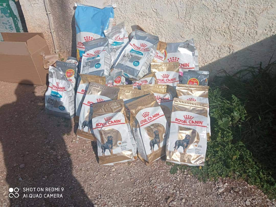 H προσφορά της Royal Canin  στην Πανελλαδική Φιλοζωική Περιβαλλοντική Ομοσπονδία  για την παγκόσμια ημέρα των αδέσποτων.