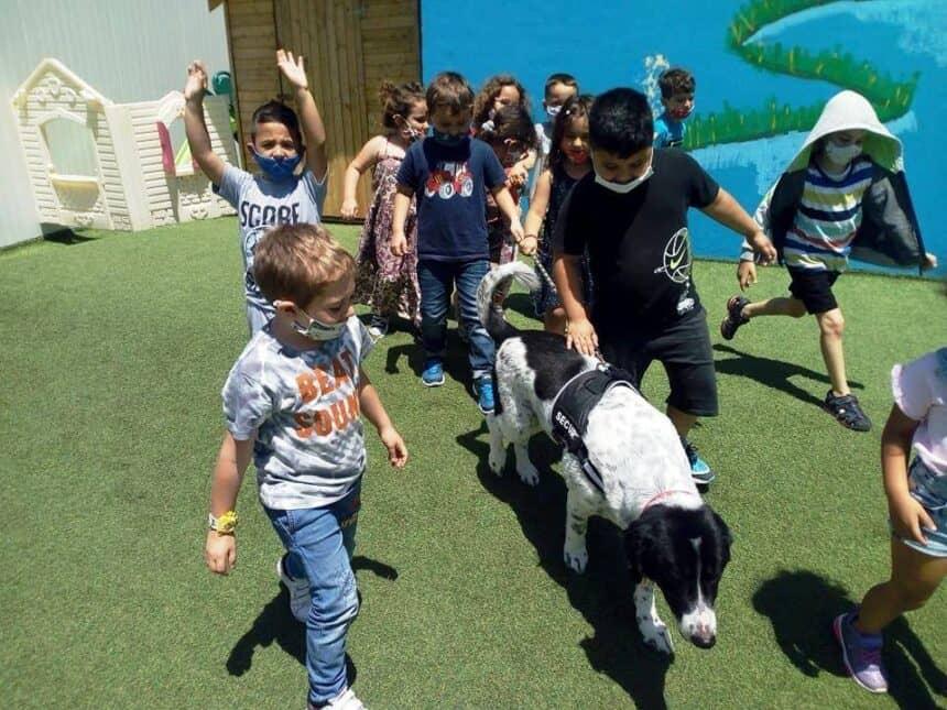 """ΚΑΤΟΙΚΙΔΙΑ: Μέλη της Οικογενείας μας – Η """"Ζωφόρος"""" στο Α Νηπιαγωγείο Αγ. Μαρίνας Μαλεβιζίου  PETS: Members of our Family – The """"Frieze"""" in the First Kindergarten Marina Maleviziou"""