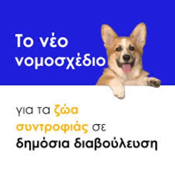 Ενστάσεις και προτάσεις για το υπό διαβούλευση σχέδιο νόμου για τα ζώα συντροφιάς από την ΠΦΠΟ και την Ζωοφιλική Ομοσπονδία Σωματείων Αττικής και Σαρωνικού