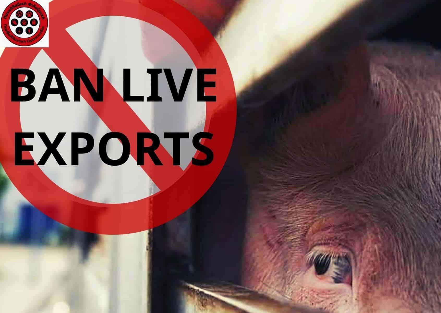 #BanLiveExports Tερματισμός ζωντανών εξαγωγών από την Ευρωπαϊκή Ένωση .