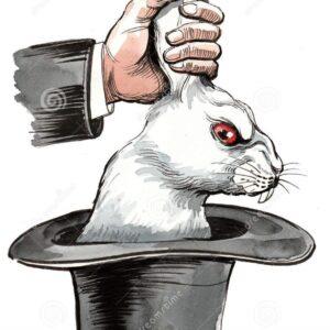 Επιστολή διαμαρτυρίας για χρησιμοποίηση κουνελιών- περιστεριών σε θεάματα με κερδοσκοπικό σκοπό.